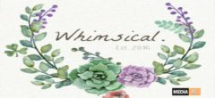 Whimsical Event– November 2019