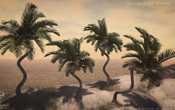 Little Branch Tropical Palm Cluster – NEW