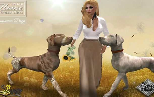 │T│L│C│Animesh Companion Dogs – New Release at MadPea Pet Friends Fair – NEW