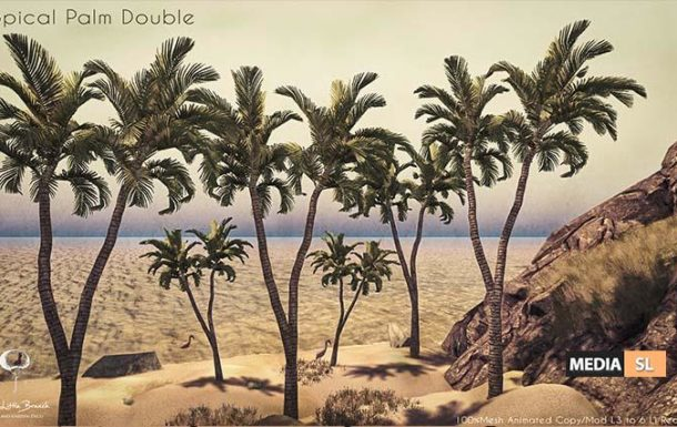 Little Branch Tropical Palm Double – NEW