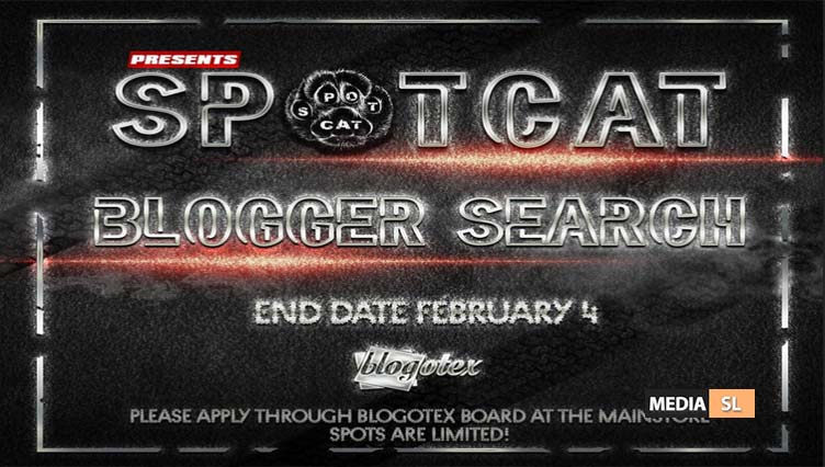 SpotCat BLOGGER SEARCH – BLOG