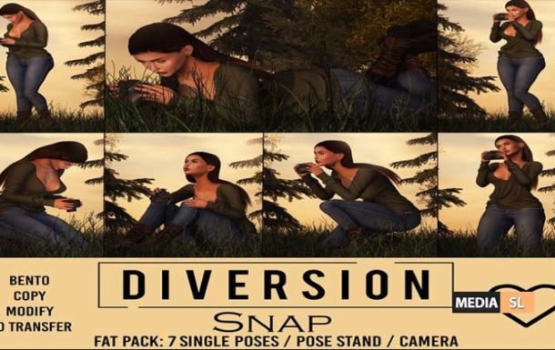 Diversion – Snap @ ACCESS – NEW