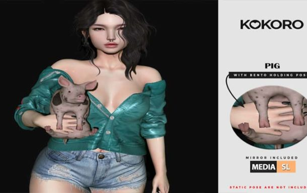 Pig Bento Holding – NEW