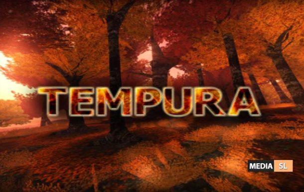 TEMPURA ISLAND – Place