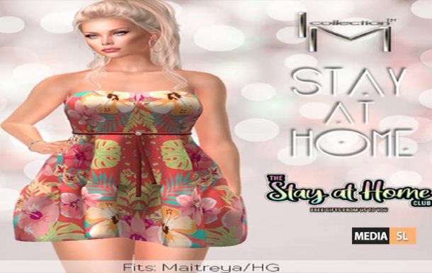 I.M.C. Stay at Home vendor – Gift