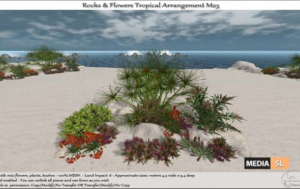 Rocks & Flowers Tropical Arrangement – NEW DECOR