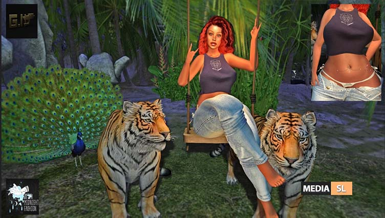 Me and my Tiger's – BLOG