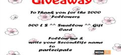 Giveaway 2k followers – Thanks you all ♥ – BLOG