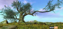 !Skifija 12 Months Auto Season Tree – NEW DECOR