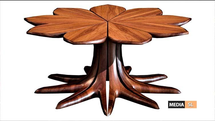 Kenya Wenge Wood Coffee Table  – NEW DECOR