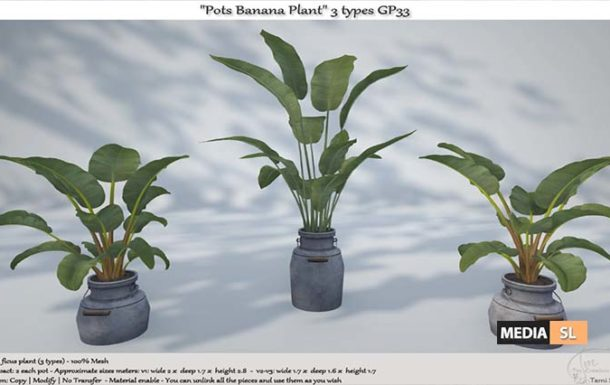 ".:Tm:.Creation ""Pots Banana Plant"" 3 types – NEW DECOR"